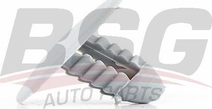 BSG BSG30995017 - Комплект клип, внутренняя отделка салона autodif.ru