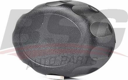 BSG BSG 30-922-068 - Поворотная ручка, регулировка спинки сидения autodif.ru
