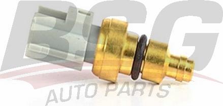BSG BSG 30-840-030 - Датчик, температура охлаждающей жидкости autodif.ru