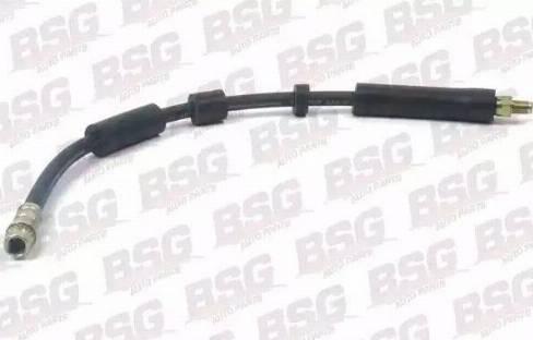 BSG BSG70-730-021 - Тормозной шланг autodif.ru