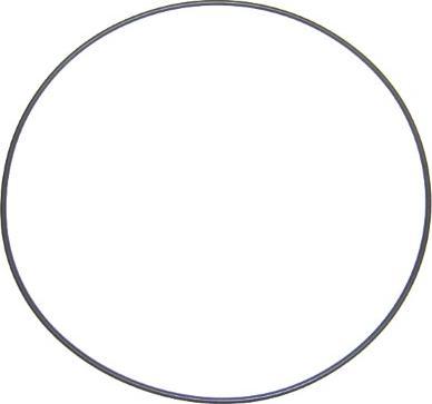 Elring 803.881 - Уплотнительное кольцо, гильза цилиндра autodif.ru