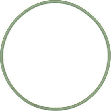 Elring 825.131 - Уплотнительное кольцо, гильза цилиндра autodif.ru