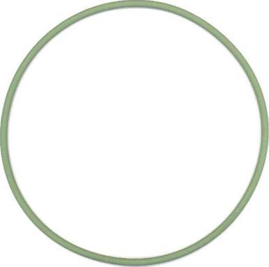 Elring 825751 - Уплотнительное кольцо, гильза цилиндра autodif.ru